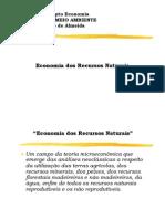 Economia Dos Recursos Naturais 1