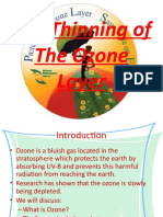 The Thinning of the Ozone Layer