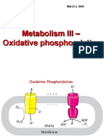 Lecture 3 Oxidative Phosphorylation Metabolism III