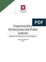 Apuntes de Derecho Procesal Orgánico.