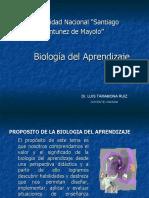 BIOLOGIADELAPRENDIZAJE