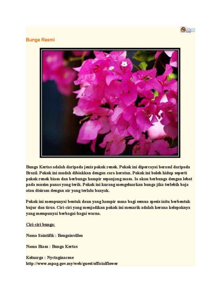 Bunga Rasmi