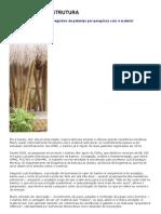 o Bambu Como Estrutura