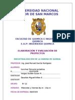 17458451 Proyecto Industrializacion de La Quinua