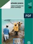 FAO Macro Bra Chi Um Manual 2003