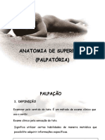 Anatomia Palpatória (PPTshare)