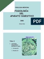 p6b-PEPTIDOS