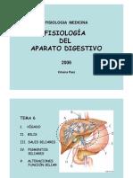p7- Higado y Bilis i Tema 6