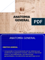 1. Martes 29 Marzo - Introducción a la Anatomía