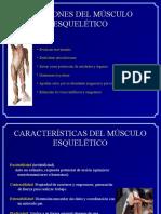 5. Martes 19 Abril - Sistema Muscular y Nervioso