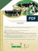 Protocolo Iatf Vacas Mesticas