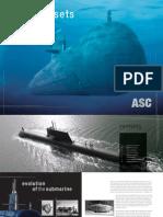 ASC Hidden Assets[1]