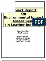 Environmental Impact Assessment Report