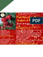 Perfil Integral Del Negocio de La Granada 2011