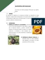 Características del maracuyá