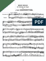 Beethoven - Duets Per a Clarinet i Fagot