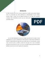 Desalar Agua de Mar de Forma Casera Proyecto