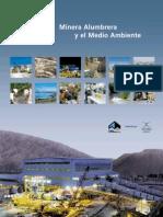 Minera Alumbrera y Medio Ambiente