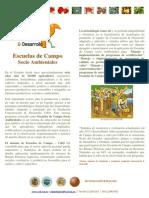 Farm field schools / sustainable Escuelas de campo