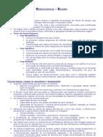 Hemocitopoese_-_Resumo