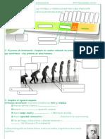 Ficha 1. PREHISTORIA. Cronologia y proceso de hominización