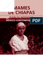mames_chiapas
