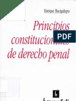Bacigalupo Enrique - Principios Constitucionales de Derecho Penal