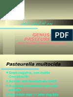 Lecture 26 Pasteurella