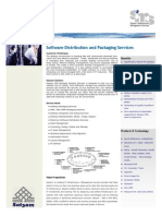 Software Distribution and Packaging Services