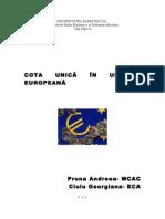 Cota Unica in Tarile Europene