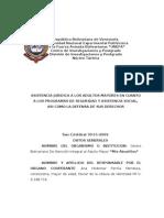 Informe Final Servicio rio
