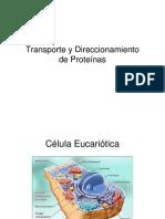 Presentacion-7-Transporte y Direccionamiento de Proteínas