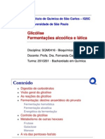 Glicolise05082010