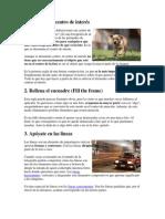 Microsoft Word - Reglas Basicas de Composicion Fotográfica