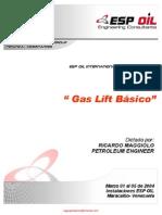 ESP OIL y Maggiolo R Gas Lift Basico