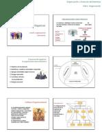 4_Organizacion_y_estructuras_