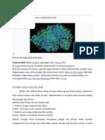 Makromolekul-polimer