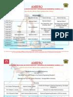 Programa_AMIDIQ-2011
