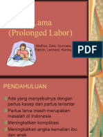 Partus Lama (Prolonged Labor)