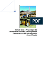 Manual Preparacao de Gas Aterro Banco Mundial