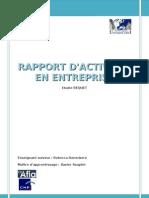 Rapport Activite Definitif