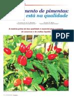 Processamento de pimentas:o segredo está na qualidade