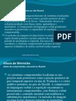 Resumão de Neurolinguística para VI web 01a
