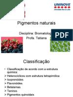 Pigmentos+naturais