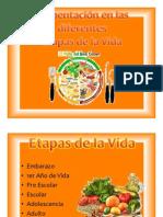 Alimentación en las diferentes Etapas de la Vida scribb