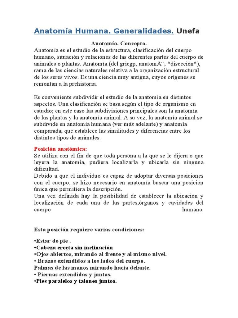 Anatomia General Ida Des Esqueleto Axilhuesos Craneo