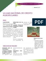 Sistema Nacional de Credito Agropecuario KAREN BARRAGAN