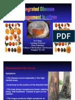 Disease Management in Citrus