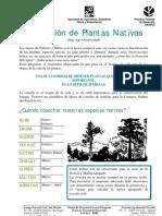produccion plantas nativas