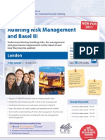 Auditing Risk Management and Basel 111 July11